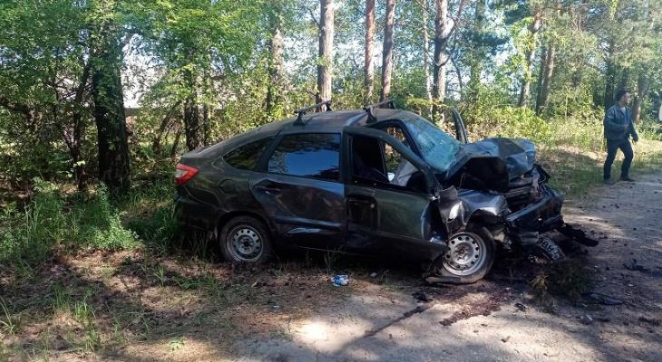 Смертельное ДТП на одной из трасс Марий Эл: водитель не выжил после столкновения с деревом