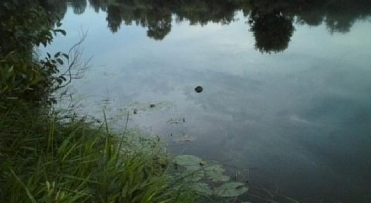 В Марий Эл из пруда спасатели извлекли тело ребенка