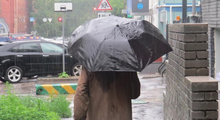 «Ветрено и слякотно»: погода в Йошкар-Оле начинает стремительно портиться