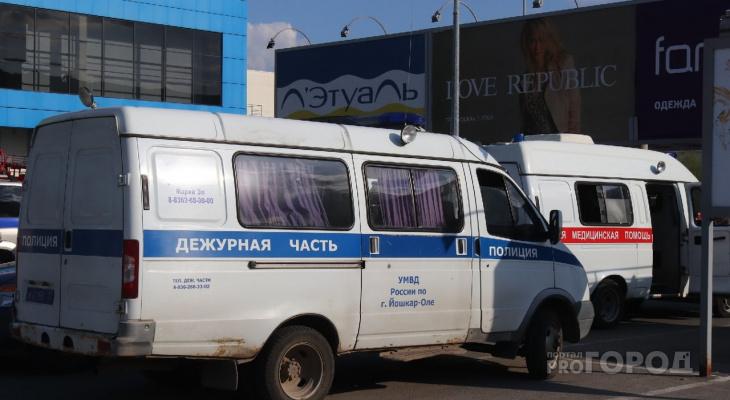 Штраф от 1,5 тысячи рублей грозит водителям и пешеходам в Марий Эл