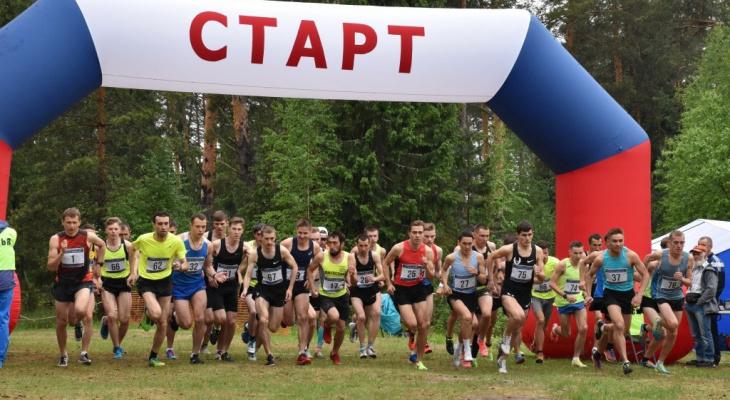 Минспорттуризм Марий Эл выплатит семерым спортсменам 300 тысяч рублей