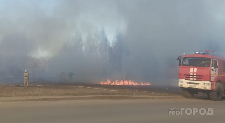 В Марий Эл за несколько месяцев случилось 39 лесных пожаров