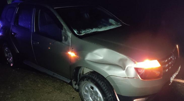 На трассе Марий Эл молодой автомобилист сбил пенсионера