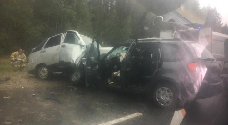 «Женщина лежала вся в крови»: на трассе Звениговского района произошло смертельное ДТП