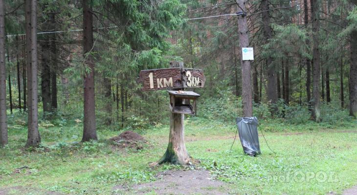 В Марий Эл специалисты советуют вновь не ходить в лес из-за аномалий