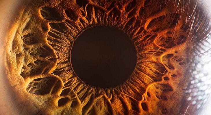 «Факт налицо или на глаз»: ученые научились по роговице определять последствия коронавируса