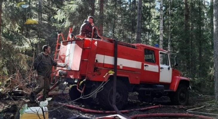 Ликвидация лесных пожаров в Марий Эл продолжается