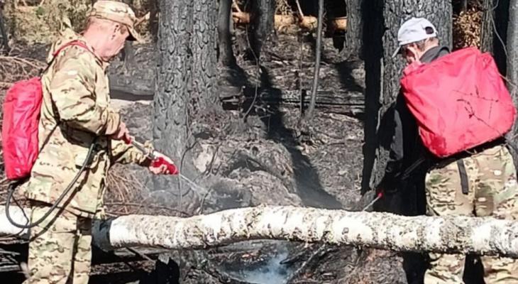 В МЧС сообщили о полной ликвидации пожара в Медведевском районе