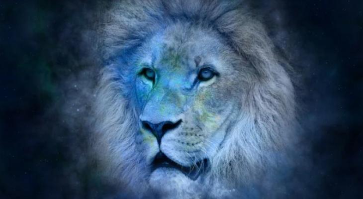 Гороскоп на 20 сентября: астропрогноз «говорит» Львам, что сегодня благоприятный день для начала любого дела, а Козероги почувствуют прилив энергии