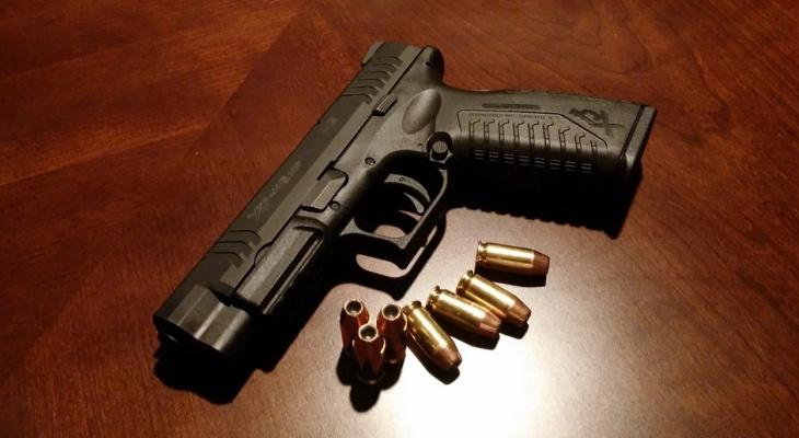 Полиция Марий Эл предлагает выплату за сдачу незаконно хранящегося оружия