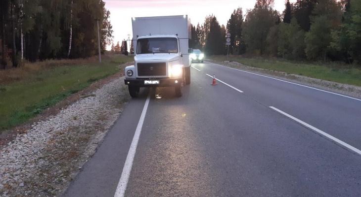 Надо покупать световозвращающую  одежду: в Марий Эл водитель газели сбил нетрезвого пешехода