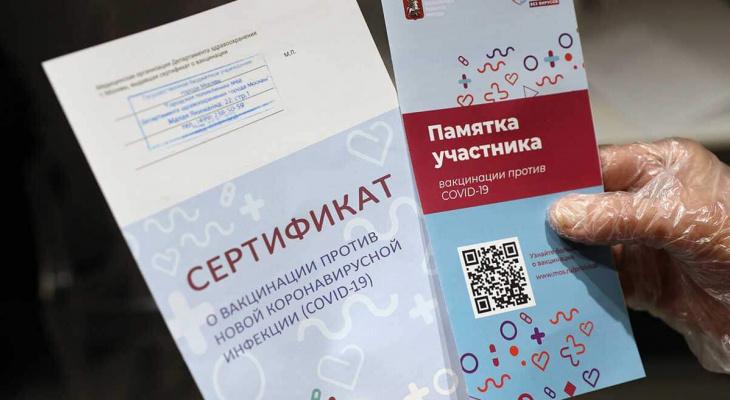 В нескольких регионах России начнет действовать система QR-кодов из-за коронавируса